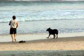 BUCHANANFPC PHOTO (GERRY, AND HIS SERVICE DOG, MACHO, AT ORCHARD BEACH -- BRONX, NEW YORK)