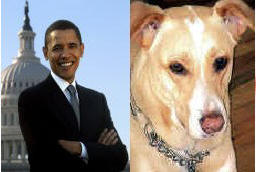 BUCHANANFPC PHOTO (RENEGADE AND THE PRESIDENT OBAMA)